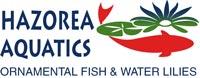 Hazorea Aquatics company logo