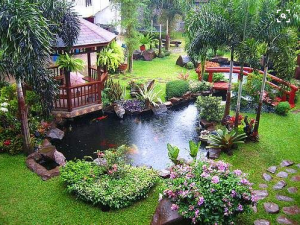 Outdoor koi pond in landscaped yard with gazebo