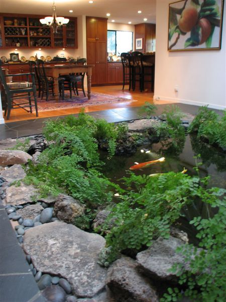 Building an indoor koi pond next day koi for Koi pond design pictures